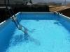 shoham-dov-pool